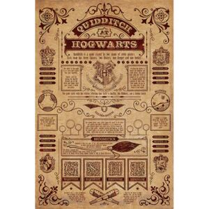 Poster Harry Potter - Quidditch At Hogwarts, (61 x 91,5 cm)