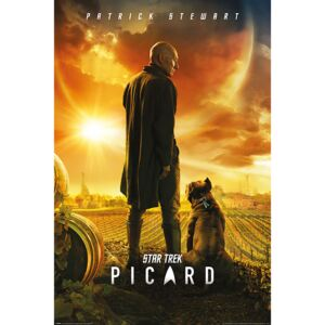 Poster Star Trek: Picard - Picard Number One, (61 x 91,5 cm)