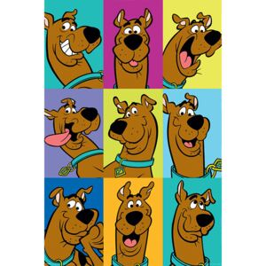 Scooby Doo - The Many Faces of Scooby Doo Poster, (61 x 91,5 cm)