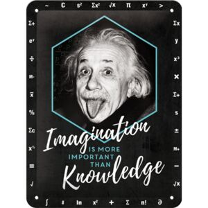 Buvu Metalna tabla: Einstein (Imagination & Knowledge) - 20x15 cm