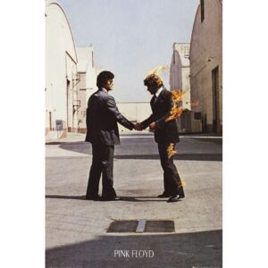 Poster PINK FLOYD - wish you were here, (61 x 91.5 cm)