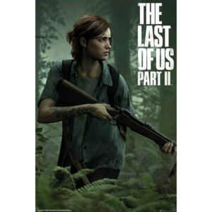 Poster The Last of Us 2 - Ellie, (61 x 91.5 cm)