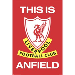 Poster Liverpool FC - This Is Anfield, (61 x 91,5 cm)