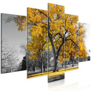 Slika - Autumn in the Park (5 Parts) Wide Gold