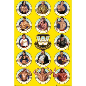 WWE - Legends Chrome Poster, (61 x 91,5 cm)