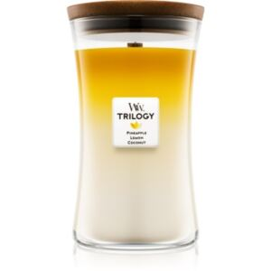 Woodwick Trilogy Fruits of Summer mirisna svijeća velika 609,5 g