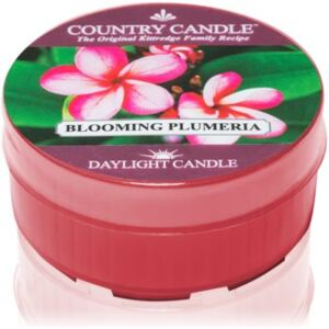 Country Candle Blooming Plumeria čajna svijeća 42 g